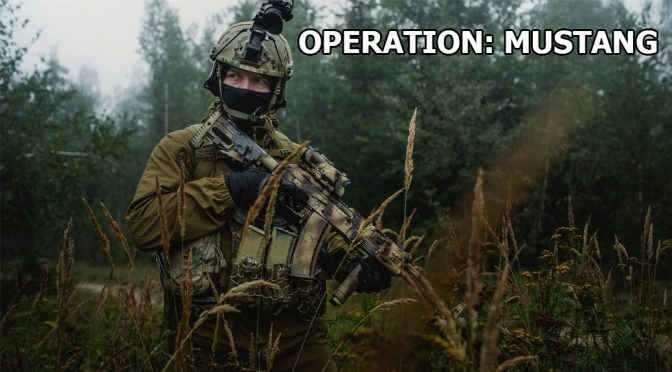 27.05 – 28.05. Operation Mustang