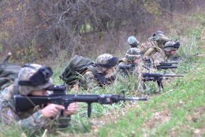 Strelecký tím v línií